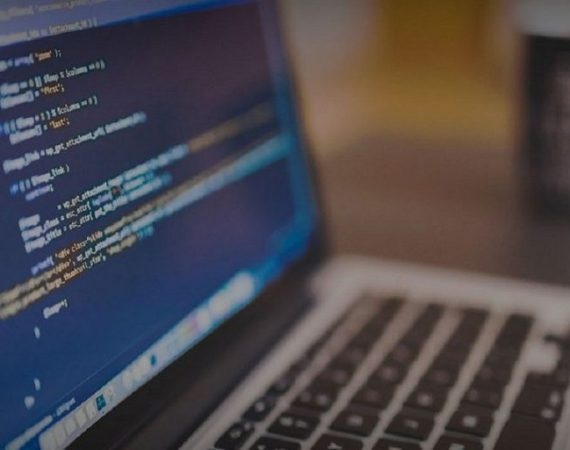 web development and web design services